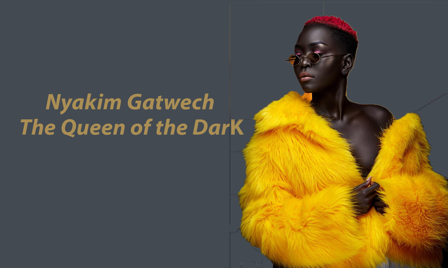 AFRICAN FASHION STYLE MAGAZINE - The Queen of Dark, Nyakim Gatwech - Photographer DAN NGU - Media Partner DN AFRICA - STUDIO 24 NIGERIA - STUDIO 24 INTERNATIONAL - Ifeanyi Christopher Oputa MD AND CEO OF COLVI LIMITED AND STUDIO 24 - Nahomie NOOR COULIBALY